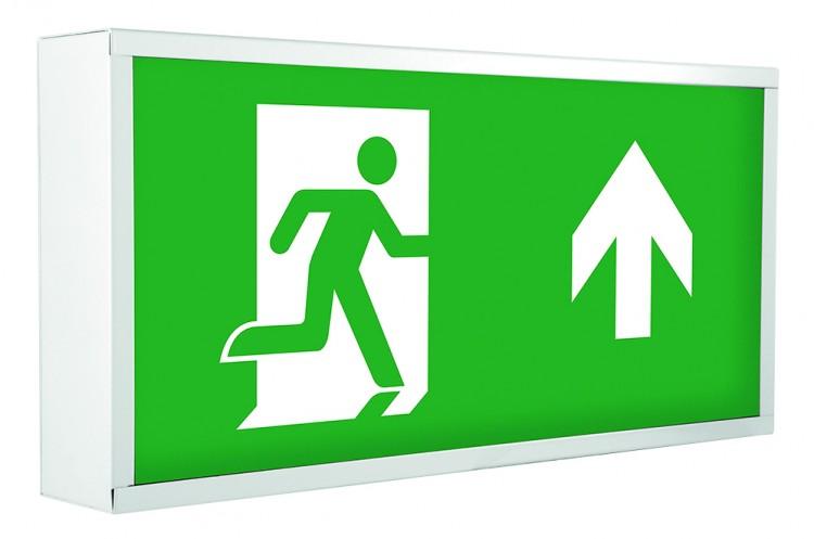 Emergency Surface Exit Box – 4 watt